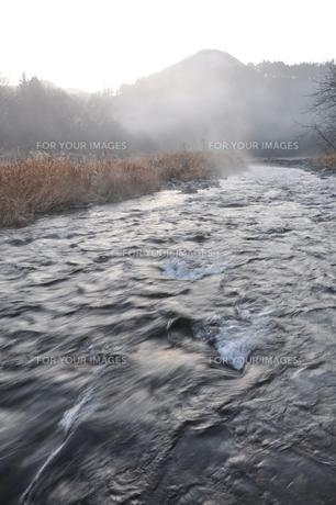 川霧の道志川の写真素材 [FYI01197743]