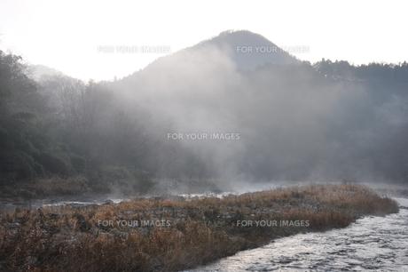 川霧の道志川の写真素材 [FYI01197747]