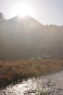 川霧の道志川の写真素材 [FYI01197749]