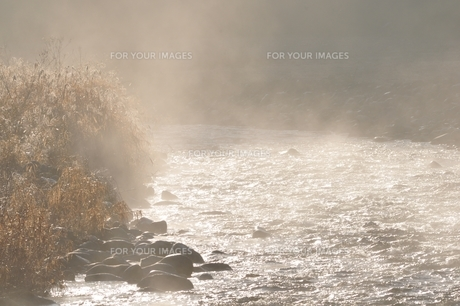 川霧の写真素材 [FYI01197751]