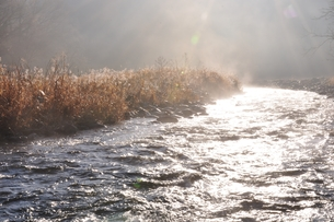 川霧の写真素材 [FYI01197752]