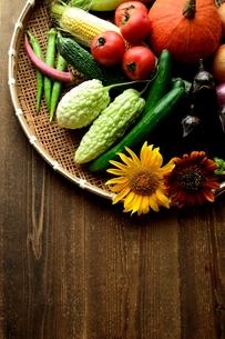 夏野菜と向日葵とざるの写真素材 [FYI01197875]
