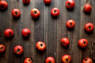 トマトたくさん 黒木材背景の写真素材 [FYI01197892]