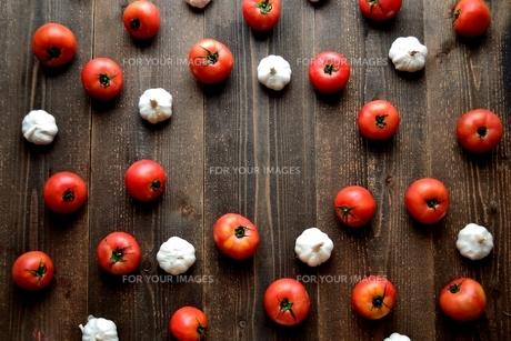 トマトとにんにく 黒木材背景の写真素材 [FYI01197894]