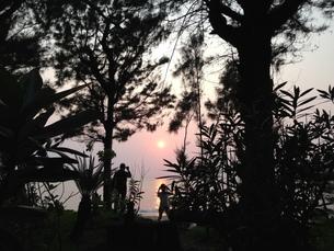 沖縄の黄昏時の写真素材 [FYI01197991]