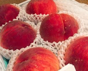 桃の写真素材 [FYI01198037]