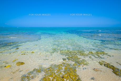 沖縄の海の写真素材 [FYI01198089]