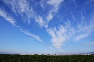 日本の風景 ・ 田園と秋の空の写真素材 [FYI01198187]