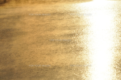冬の朝 朝霧の湖の写真素材 [FYI01198199]