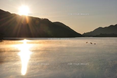 冬の朝 朝霧の湖の写真素材 [FYI01198201]