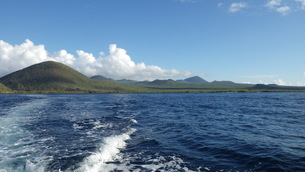 グリーンアイランド フロレアナ島 ガラパゴス諸島の写真素材 [FYI01198279]