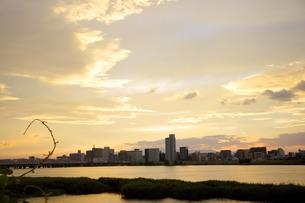 夕日の写真素材 [FYI01198348]