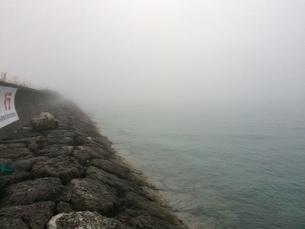 霧の写真素材 [FYI01198427]