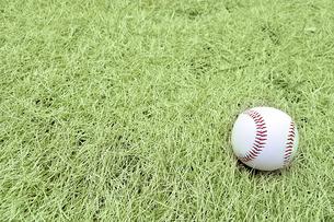 芝生の上の野球ボールの写真素材 [FYI01198566]