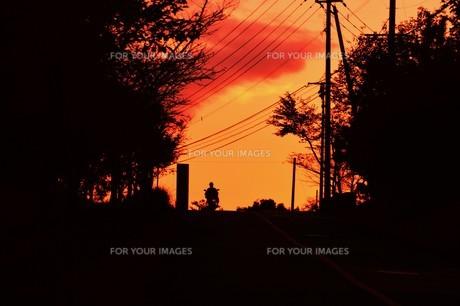 日本の風景 ・ 夕焼けシルエット 日暮れの帰りみちの写真素材 [FYI01198743]