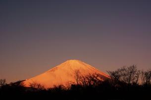 紅富士 ・ 東名足柄SAで12月の早朝7時頃撮影の写真素材 [FYI01198754]