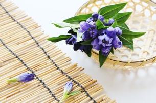 竹籠とリンドウの写真素材 [FYI01198834]