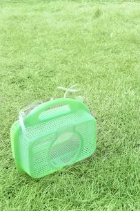 芝生の上の虫かごの写真素材 [FYI01199133]