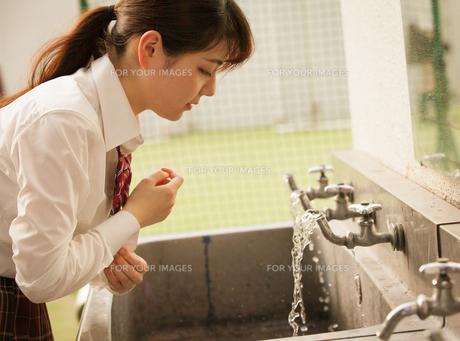 蛇口で水を飲む女子高生の写真素材 [FYI01199263]