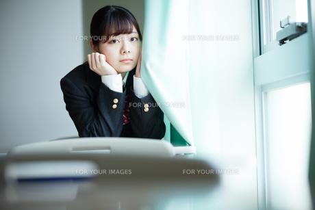 教室 女子高生の写真素材 [FYI01199292]