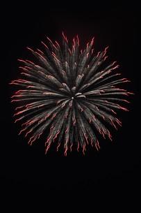 夜空を彩る夏の風物詩 ・ 花火大会の写真素材 [FYI01199305]