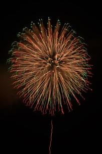 夜空を彩る夏の風物詩 ・ 花火大会の写真素材 [FYI01199313]