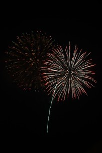 夜空を彩る夏の風物詩 ・ 花火大会の写真素材 [FYI01199318]