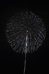 夜空を彩る夏の風物詩 ・ 花火大会の写真素材 [FYI01199321]