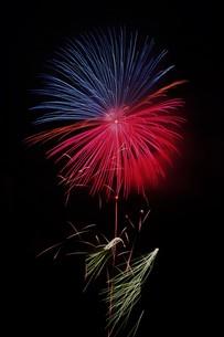 夜空を彩る夏の風物詩 ・ 花火大会の写真素材 [FYI01199326]