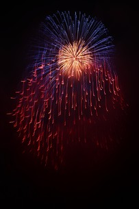 夜空を彩る夏の風物詩 ・ 花火大会の写真素材 [FYI01199329]