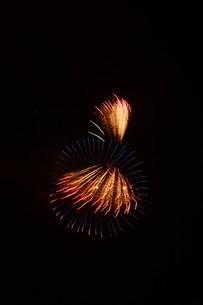 夜空を彩る夏の風物詩 ・ 花火大会の写真素材 [FYI01199333]