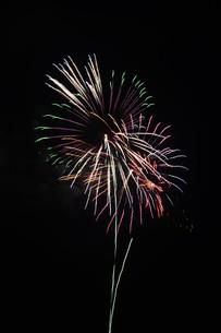 夜空を彩る夏の風物詩 ・ 花火大会の写真素材 [FYI01199335]