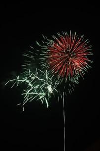 夜空を彩る夏の風物詩 ・ 花火大会の写真素材 [FYI01199341]