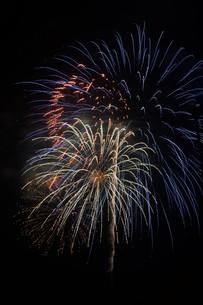 夜空を彩る夏の風物詩 ・ 花火大会の写真素材 [FYI01199345]