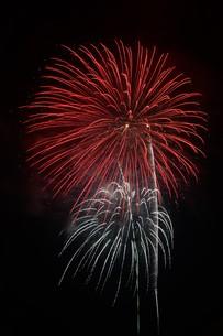 夜空を彩る夏の風物詩 ・ 花火大会の写真素材 [FYI01199347]