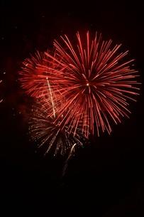 夜空を彩る夏の風物詩 ・ 花火大会の写真素材 [FYI01199348]