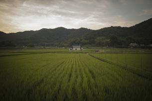 田舎の風景の写真素材 [FYI01199356]