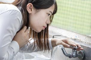 校庭の水道から水を飲む女子高生のイメージの写真素材 [FYI01199375]