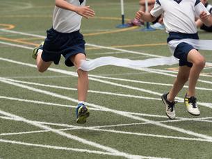 徒競走のゴールの写真素材 [FYI01199412]