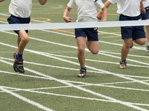 徒競走のゴールの写真素材 [FYI01199414]