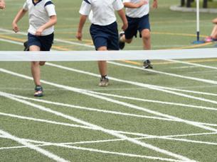 徒競走のゴールの写真素材 [FYI01199415]