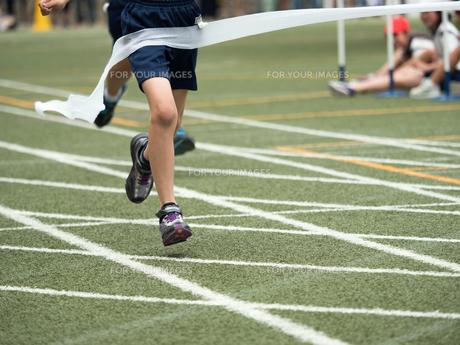 徒競走のゴールの写真素材 [FYI01199418]