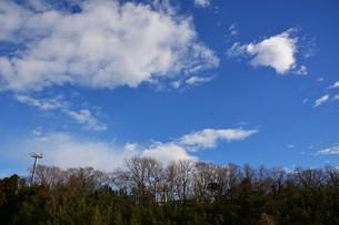 冬晴れの日・背景素材の写真素材 [FYI01199523]