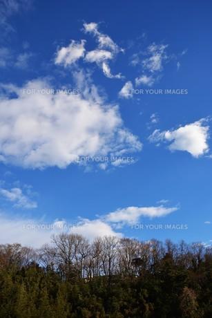冬晴れの日・背景素材の写真素材 [FYI01199524]