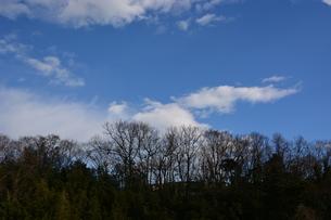 冬晴れの日・背景素材の写真素材 [FYI01199526]