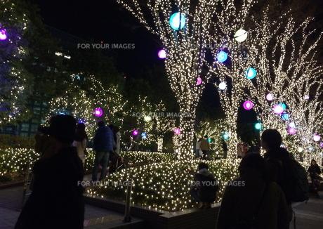 12月の街の写真素材 [FYI01199540]