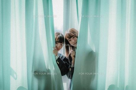 カーテンから顔を出す女子高生2人2の写真素材 [FYI01199612]