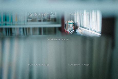 図書館にいる女子学生を本棚越しに見るの写真素材 [FYI01199646]
