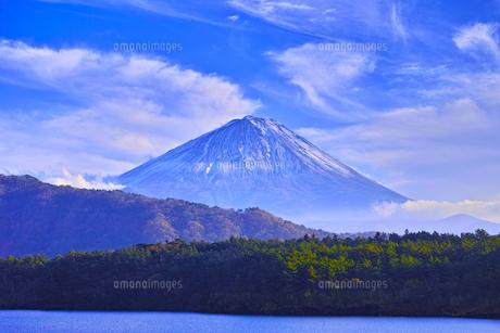 西湖から見る富士山の写真素材 [FYI01199841]
