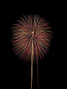 夏の夜空を彩る赤いカラフルな花火の写真素材 [FYI01199906]
